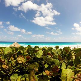 Мексика: Пляжи Канкуна 9-20 км. Описание, фото, отзывы.